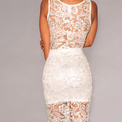 Delicate Lace Dew Pockets Hip Dress..